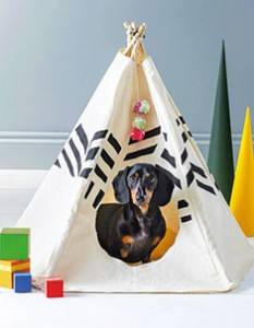 dog-tepee
