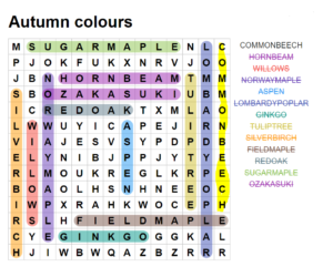 Autumn Colours Wordsearch Answers