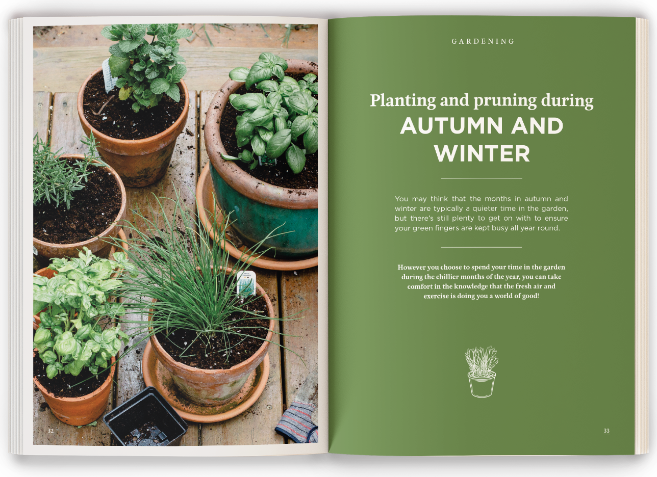 Planting For Autumn Mockup